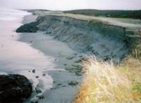 遠州灘沿岸